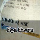 SMN Feathers